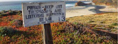 Lunatic Ravings beach pic