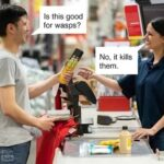 wasps-shop-funny-picture-6541536.jpeg