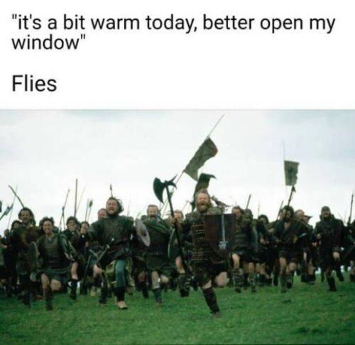 Approaching Hoard of the Flies